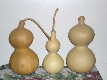 3 Gourds dried and cleaned 3 ways